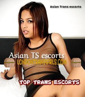 Asian Trans Escorts